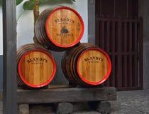 barrels enorm madera oakwine Royaltyfria Foton