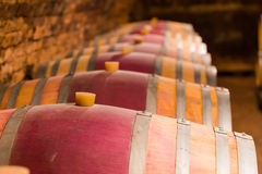 Barrels for the finest wine Royalty Free Stock Photos