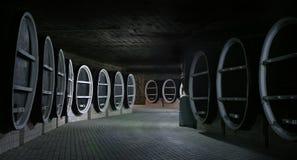 barrels gammal wine Arkivfoto