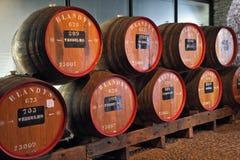 barrels klassisk enorm madera oakwine Royaltyfri Fotografi