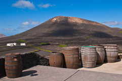 Barrels of Lanzarote Wine Royalty Free Stock Images