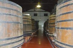 Barrels of Malbec Royalty Free Stock Photography