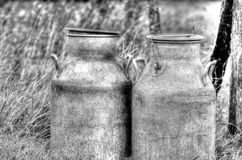 Barrels of milk. Barrel of milk in the country Stock Images