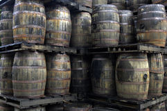 Barrels Of Old Rum Stock Images