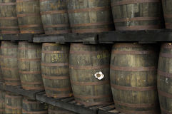 Barrels of old rum Royalty Free Stock Image