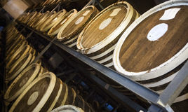 Barrels of plum brandy Stock Image