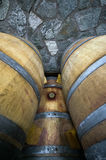 Barrels with red vine Royalty Free Stock Photography