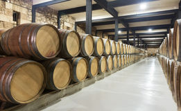 Barrels in rows at  wine factory Royalty Free Stock Photos