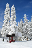Barrels in snow under fir. Three barrels with red rims in snow under snowy fir trees and some empty bilboards Stock Photography