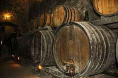 Barrels for storing wine in an old cellar. Stacked on racks Royalty Free Stock Photo