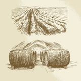 Barrels, vineyard, harvest, farm. Hand drawn collection Stock Photography