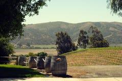 Barrels on a vineyards Stock Image