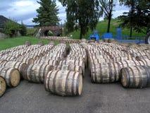 barrels whiskey Royaltyfria Bilder
