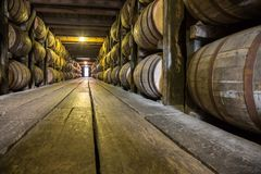 Barrels of Whiskey royalty free stock image