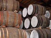 barrels whisky royaltyfria foton