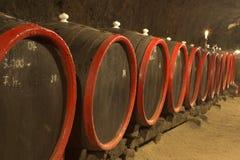 Barrels for wine Stock Image