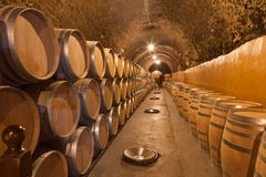 Barrels of wine Stock Photos