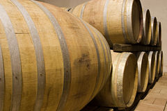 Barrels of wine in a cellar. Of a winery in the Langhe in Piedmont Stock Photography