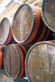 Barrels in a wine cellar Stock Images