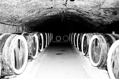 Barrels of wine. Stock Image
