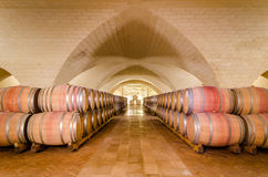 Barrels in wine cellar Stock Photos