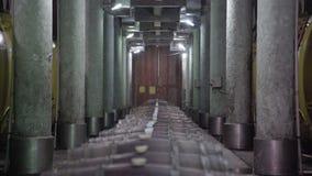 Barrels in wine cellar of Georgia winery stock video footage