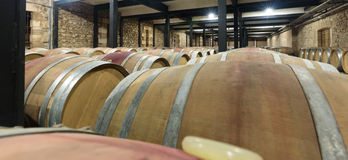 Barrels in wine cellar Royalty Free Stock Image