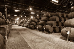 Barrels in the wine cellar Royalty Free Stock Photos