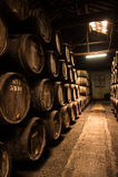Barrels in the wine cellar, Porto, Portugal Stock Images