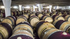 Barrels in Wine Cellar, South Africa stock image
