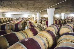 Barrels in Wine Cellar, South Africa Stock Photography
