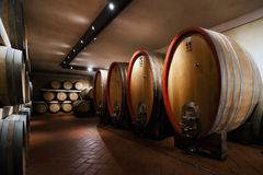 Barrels of wine Royalty Free Stock Photos