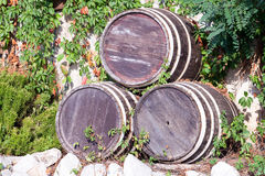 The barrels with wine standing on street Royalty Free Stock Images