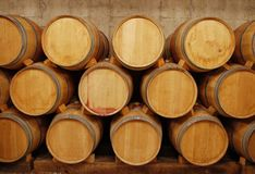 Barrels of wine in storage Royalty Free Stock Photo