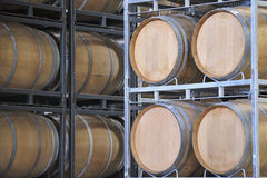 Barrels of Wine in a Vineyard Stock Image