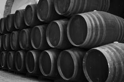 Barrels in the winery in black and white Stock Photos