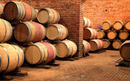 Barrels in the winery Royalty Free Stock Image