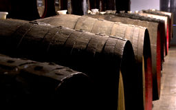 Barrels at a Winery Royalty Free Stock Photos