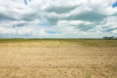 Barren agriculture field royalty free stock photography