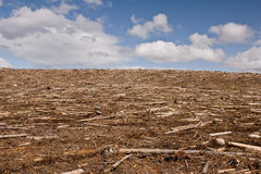 Free Barren Clearcut Stock Photography - 14498002