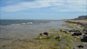 Barren Coast - Waters Edge stock video