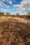 Barren countryside Stock Photos