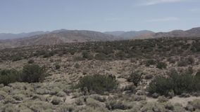 A barren desert land with some small shrubs. Aerial pullback shot of a barren desert land with some small shrubs. Need something more specific? Custom clips stock footage