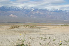 Barren desert landscape of Death Valley Royalty Free Stock Photos