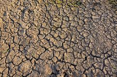 Drought land. Barren earth. Dry cracked earth background. Cracked mud pattern. Royalty Free Stock Photography