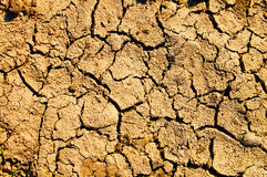 Barren earth texture Royalty Free Stock Images