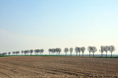 Barren farmland Royalty Free Stock Images