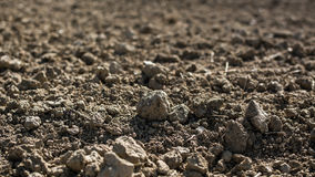 Barren field during drought. Plowed and cultivated barren soil on the field - dry weather Stock Photo