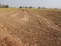 Barren field in Shegaon. A barren landscape in a drought prone Indian village Royalty Free Stock Photo