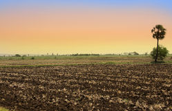 Barren fields in India Royalty Free Stock Images